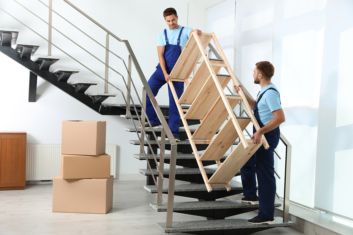 Professional workers carrying wooden rack on stairs in office. M